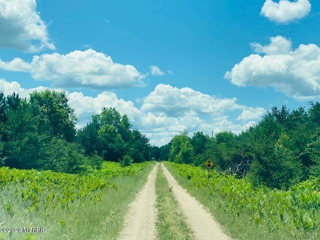 Potter Road, Kaleva, MI 49645 (MLS #20027129) :: Keller Williams RiverTown