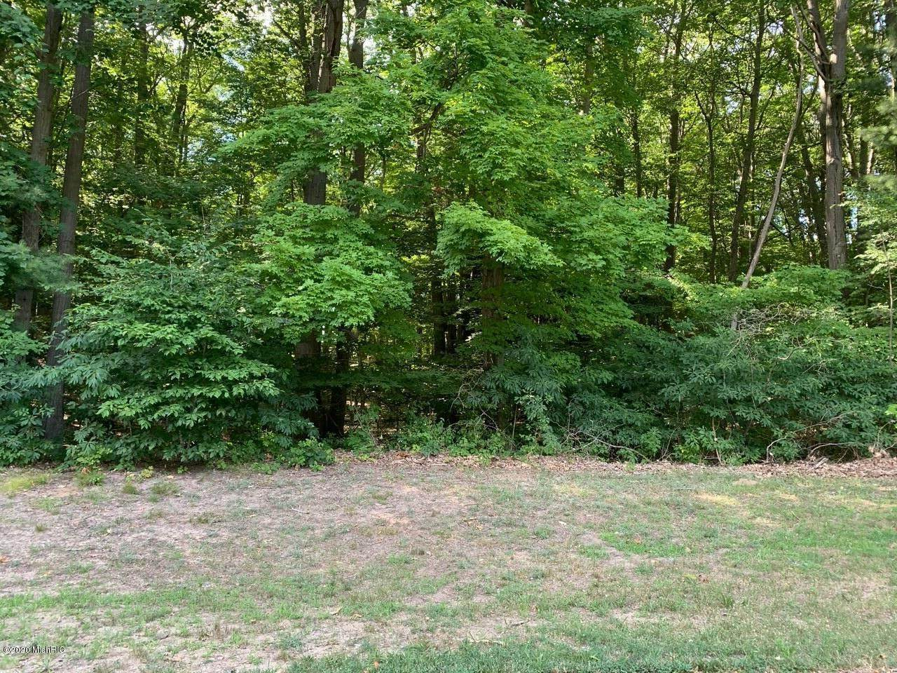 6696 Indian Pipe Circle - Photo 1