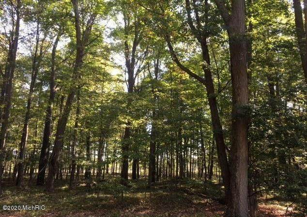 52+/- Acre 210th Avenue, Reed City, MI 49677 (MLS #20032653) :: Ginger Baxter Group
