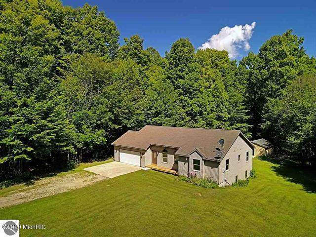9726 E 4 1/2 Mile Road, Luther, MI 49656 (MLS #20032981) :: Jennifer Lane-Alwan