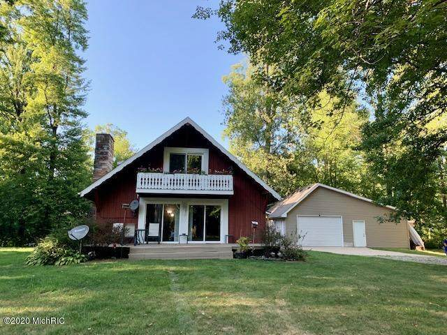 11686 Kruse Road, Petersburg, MI 49270 (MLS #20034527) :: Ron Ekema Team