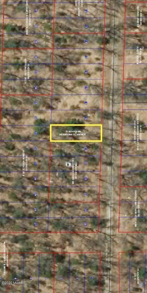 #4 Lot 20 Blk 23 Lakewoods Acres, Baldwin, MI 49304 (MLS #20035249) :: Jennifer Lane-Alwan