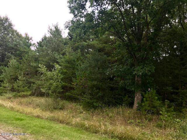 Red Apple Road, Manistee, MI 49660 (MLS #20036200) :: Ron Ekema Team