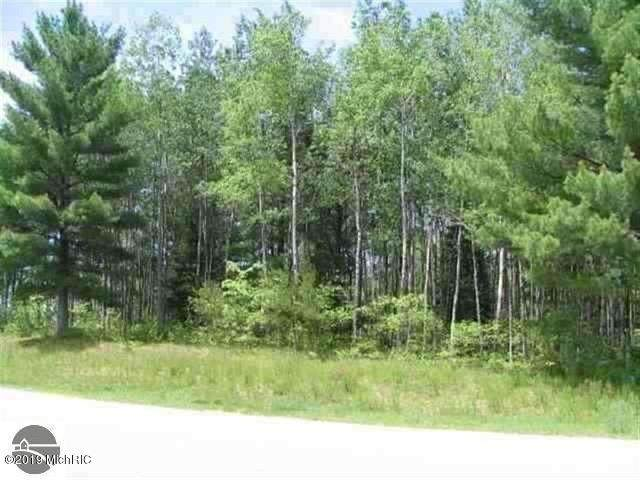 0 White Pine Drive Lot 63, Cadillac, MI 49601 (MLS #20038478) :: Ginger Baxter Group