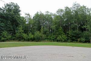 11830 Crystal Ridge Dr. Drive NE, Sparta, MI 49345 (MLS #20045114) :: Jennifer Lane-Alwan
