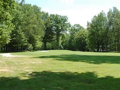 9621 Sunset Drive #290, Canadian Lakes, MI 49346 (MLS #20045973) :: Deb Stevenson Group - Greenridge Realty