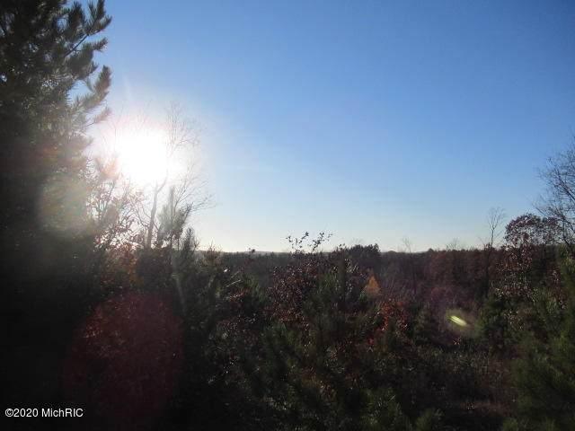 7666 Wills Road, Bear Lake, MI 49614 (MLS #20047061) :: Deb Stevenson Group - Greenridge Realty