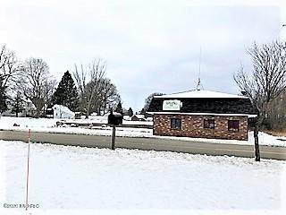 425 E Division Street, Sparta, MI 49345 (MLS #20051957) :: Your Kzoo Agents