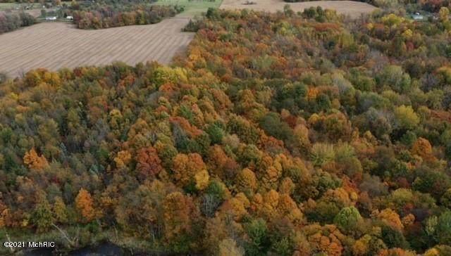 35375 Co Rd 215, Bangor, MI 49013 (MLS #21000264) :: Deb Stevenson Group - Greenridge Realty