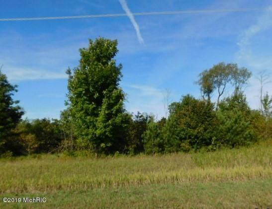 Johnson Road, Kaleva, MI 49645 (MLS #21000340) :: CENTURY 21 C. Howard