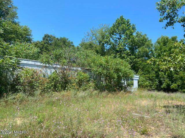0 Baseline Road, Grand Junction, MI 49056 (MLS #21002075) :: Deb Stevenson Group - Greenridge Realty