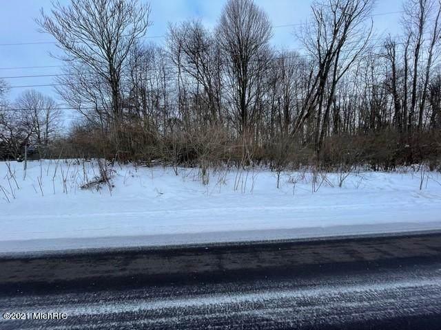 139 Schirmer Parkway, Buchanan, MI 49107 (MLS #21004230) :: Deb Stevenson Group - Greenridge Realty