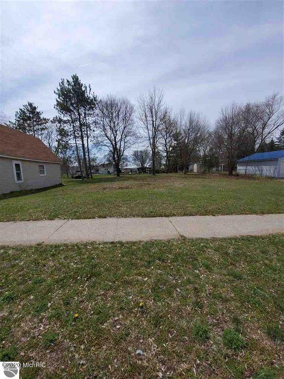 927 Chestnut Street, Cadillac, MI 49601 (MLS #21004818) :: Deb Stevenson Group - Greenridge Realty