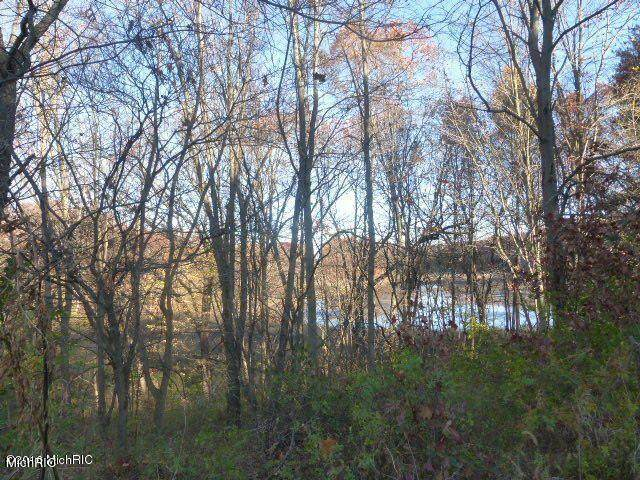 VL Allen Road, Dowagiac, MI 49047 (MLS #21007036) :: Deb Stevenson Group - Greenridge Realty