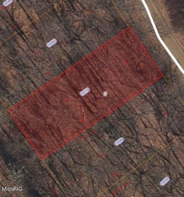 10070 Woodlawn, Jerome, MI 49249 (MLS #21008669) :: Keller Williams Realty | Kalamazoo Market Center