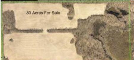 0 Collier Avenue, Battle Creek, MI 49017 (MLS #21008955) :: Keller Williams Realty | Kalamazoo Market Center