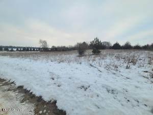Cutler Road, Six Lakes, MI 48886 (MLS #21010599) :: CENTURY 21 C. Howard