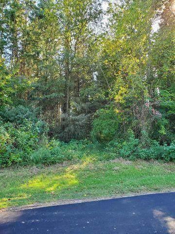 13124 Spruce Ridge Road Lot 41, Gowen, MI 49326 (MLS #21010636) :: CENTURY 21 C. Howard