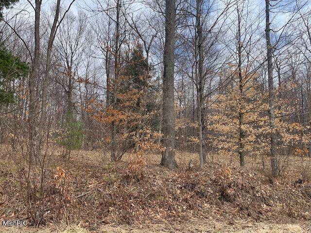 28.5 Acres 220th Avenue, Reed City, MI 49677 (MLS #21010658) :: Sold by Stevo Team | @Home Realty