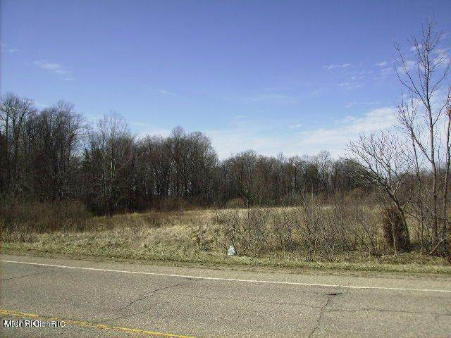 0 Blue Star Highway, South Haven, MI 49090 (MLS #21010908) :: Your Kzoo Agents