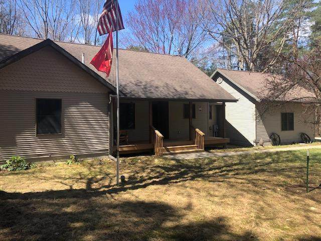 10375 Tombstone Drive, Canadian Lakes, MI 49346 (MLS #21012856) :: Your Kzoo Agents