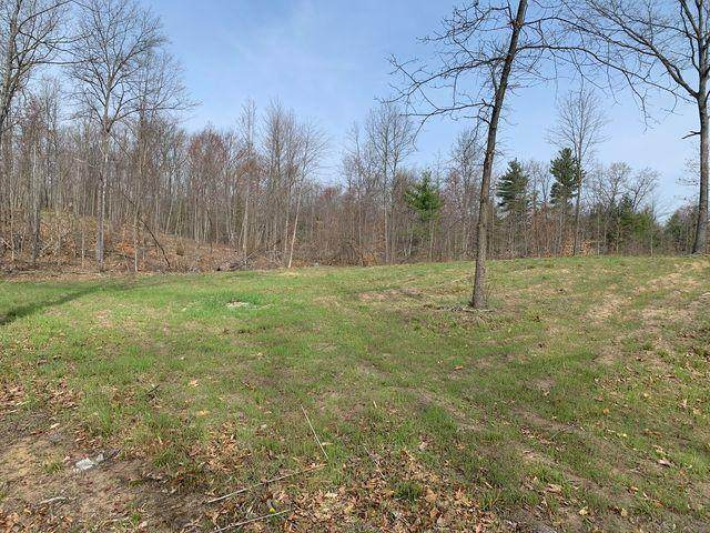 8937 170th Avenue, Stanwood, MI 49346 (MLS #21014281) :: Your Kzoo Agents