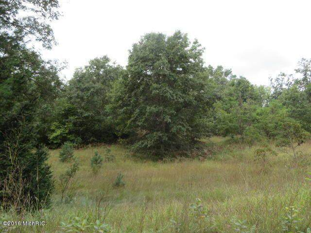 155 N Lester Avenue, White Cloud, MI 49349 (MLS #21015553) :: Your Kzoo Agents