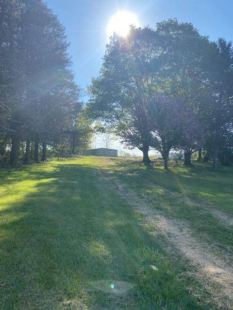 13055 Cleveland Avenue, Buchanan, MI 49107 (MLS #21015613) :: Deb Stevenson Group - Greenridge Realty