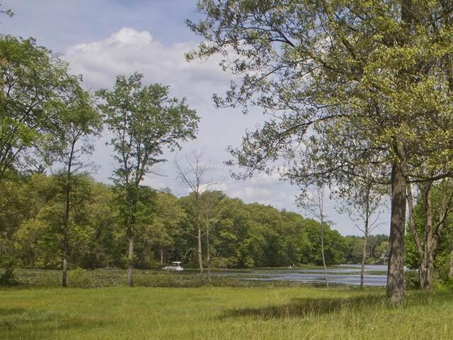 VL Dutch Settlement, Dowagiac, MI 49047 (MLS #21018556) :: The Hatfield Group