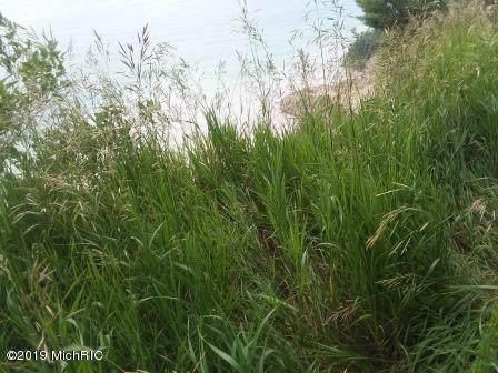 S Lakeshore Drive, Ludington, MI 49431 (MLS #21019739) :: Deb Stevenson Group - Greenridge Realty