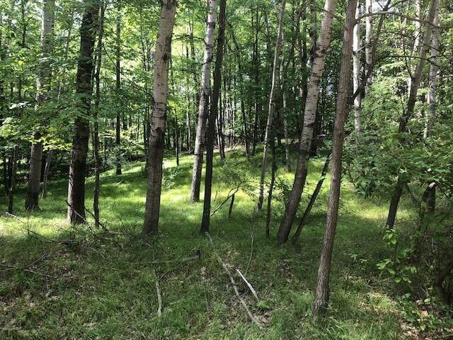11992 Cheyenne Wells Trail, Canadian Lakes, MI 49346 (MLS #21021051) :: JH Realty Partners