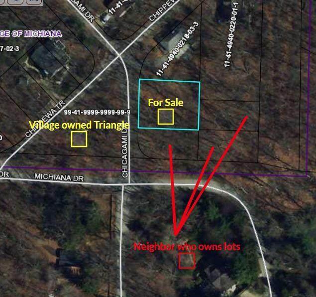 Chikagami, New Buffalo, MI 49117 (MLS #21021078) :: The Hatfield Group