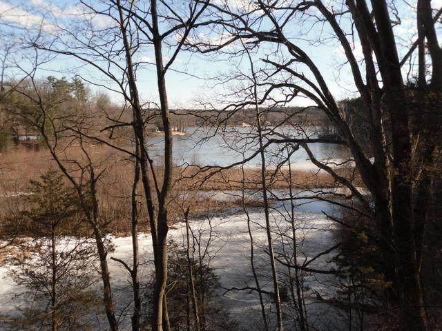 Vl Allegan Dam Road, Allegan, MI 49010 (MLS #21021250) :: BlueWest Properties