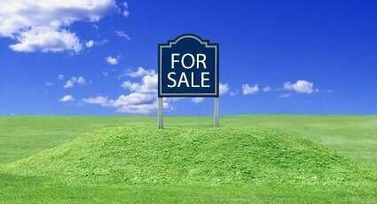 8609 Kraft Avenue SE, Caledonia, MI 49316 (MLS #21022023) :: JH Realty Partners