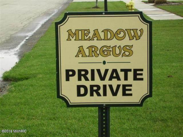 2955 Colfax Court, Fennville, MI 49408 (MLS #21022094) :: Deb Stevenson Group - Greenridge Realty