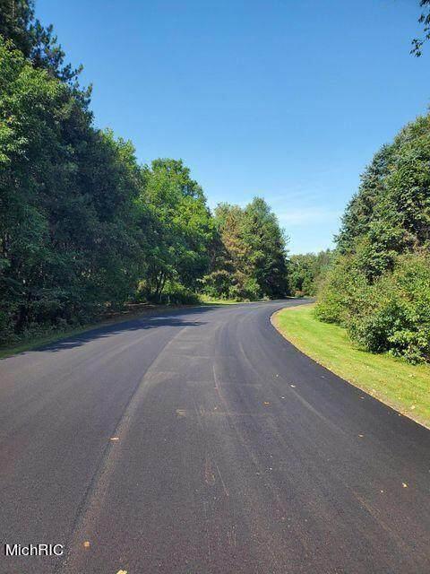 13150 Spruce Ridge Road, Gowen, MI 49326 (MLS #21023841) :: JH Realty Partners