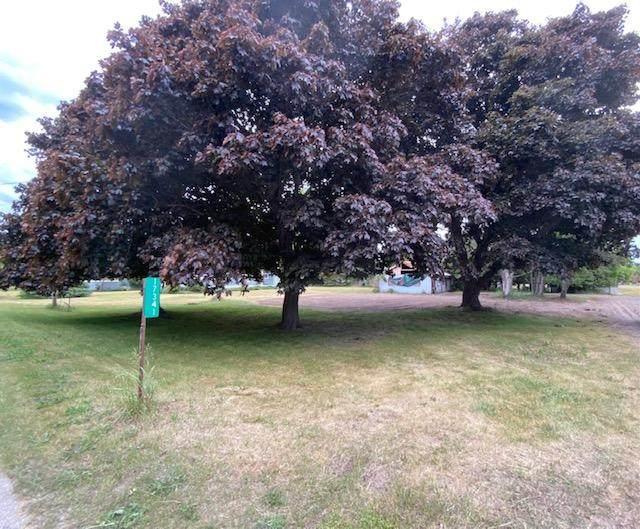 17341 Northwood Highway, Arcadia, MI 49613 (MLS #21024087) :: Deb Stevenson Group - Greenridge Realty