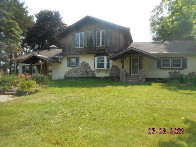 19585 S Lakeside Road, New Buffalo, MI 49117 (MLS #21026055) :: Deb Stevenson Group - Greenridge Realty