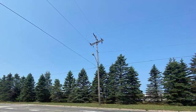 Maple Road, Manistee, MI 49660 (MLS #21026073) :: Deb Stevenson Group - Greenridge Realty