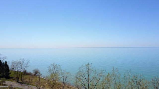Wilson Avenue, Beverly Shores, IN 46301 (MLS #21026101) :: Sold by Stevo Team | @Home Realty