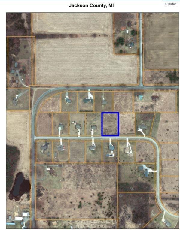 1816 Liberty Woods Road, Clark Lake, MI 49234 (MLS #21036479) :: JH Realty Partners