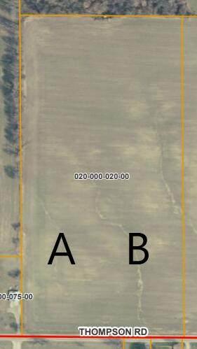 Thompson Road Lot B, Lake Odessa, MI 48849 (MLS #21094779) :: Ron Ekema Team