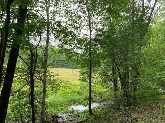 20 A-(B) E Townline, Free Soil, MI 49411 (MLS #21097708) :: Deb Stevenson Group - Greenridge Realty