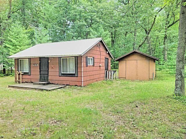 9708 S Birchwood Drive, Baldwin, MI 49304 (MLS #21097755) :: Deb Stevenson Group - Greenridge Realty