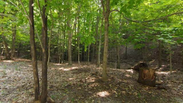 0 Lost Valley Road, Montague, MI 49437 (MLS #21099249) :: JH Realty Partners