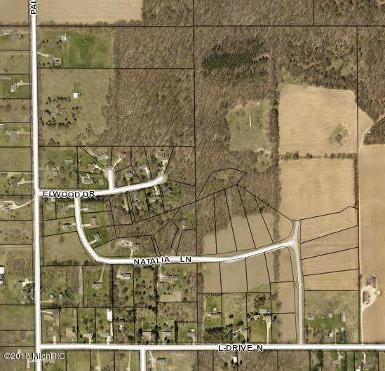 Loganwood Trail, Battle Creek, MI 49014 (MLS #21100008) :: CENTURY 21 C. Howard