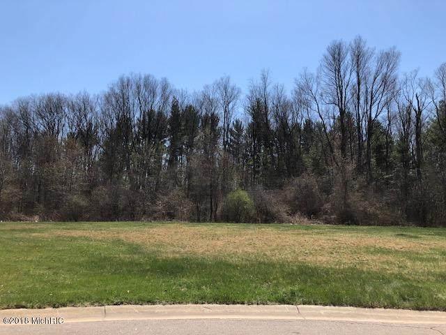 Castleridge Drive, Battle Creek, MI 49015 (MLS #21101062) :: BlueWest Properties