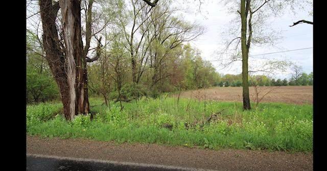 VL A-4 Michigan Avenue, Three Rivers, MI 49093 (MLS #21101668) :: Sold by Stevo Team | @Home Realty