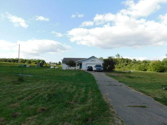 226 W Girard Road, Union City, MI 49094 (MLS #21103911) :: Sold by Stevo Team | @Home Realty
