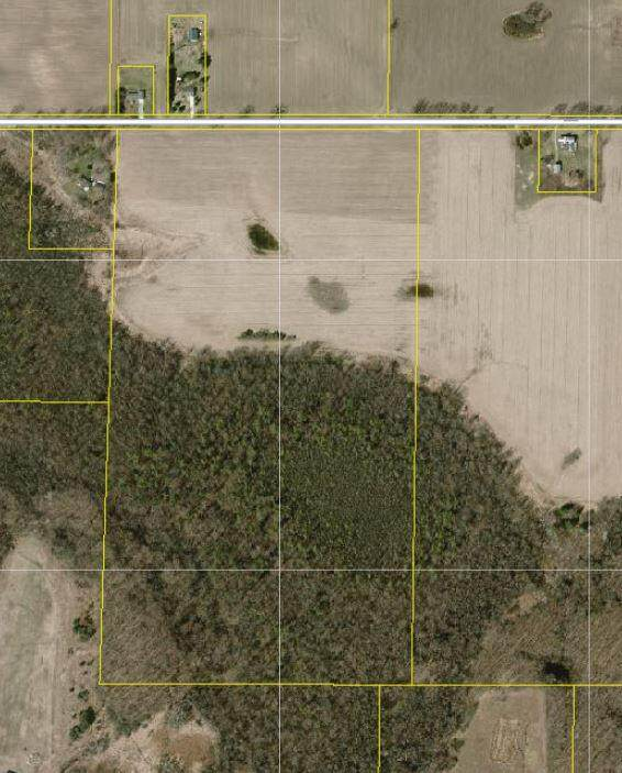 9950 11 Mile Road NE, Rockford, MI 49341 (MLS #21103931) :: CENTURY 21 C. Howard